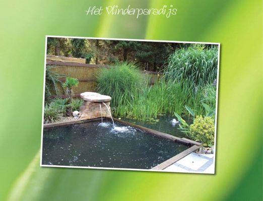 Sauna Vlinderparadijs | Vlinderparadijs | Rustig gelegen sauna omgeven door prachtige natuur | Aarschot, Vlaams Brabant, België